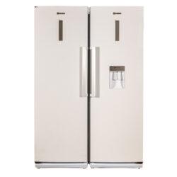 یخچال و فریزر دوقلو بنس مدل D4